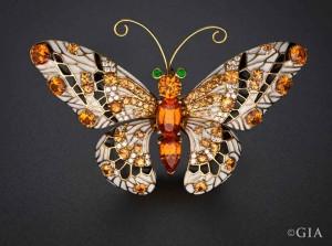 99773-Buzz-Gray-Butterfly_960