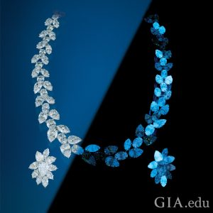 Diamond necklace and earrings.