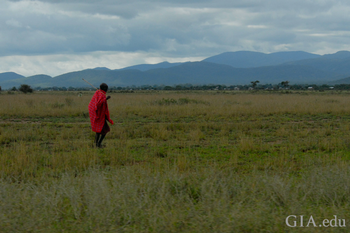 A Masai tribesman crosses one of the green plains near the tanzanite mines