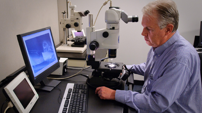 GIA 鉴定所的分级师在放大的条件下观察钻石的净度特征。