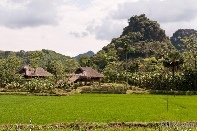 ルビーを産出するLuc Yen(ルク イェン)地域の山のふもとに小さな村がある。