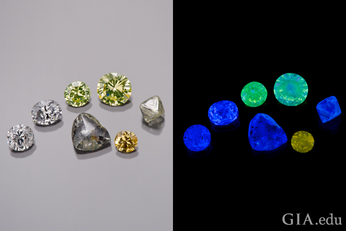 A group of seven diamonds shown under daylight-equivalent illumination (left) and exposed to long-wave UV irradiation (right).