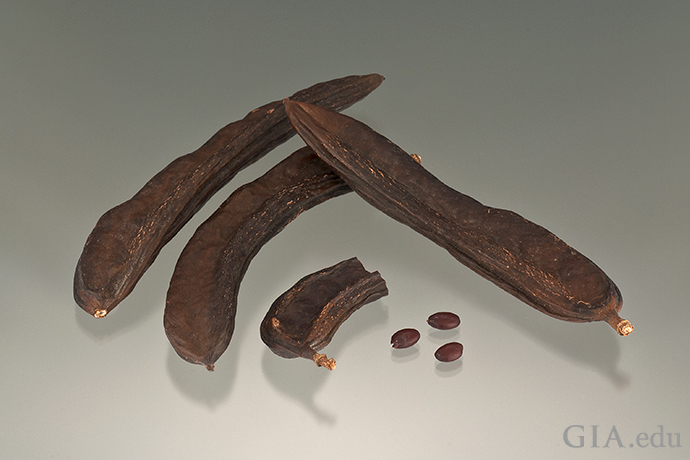 The seeds in a carob pod were used by early gem traders as counterweights in their balance scales.