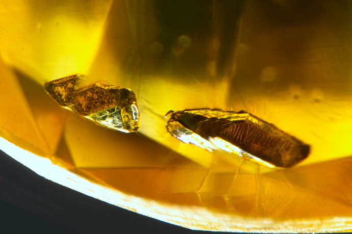 Metallic inclusions may indicate that a diamond is HPHT synthetic.