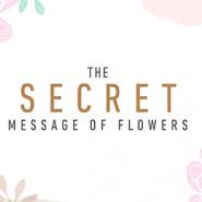 The Secret Messages of Flowers Part 2